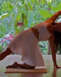 Self-Awakening Yoga Therapeutics with Anna Green